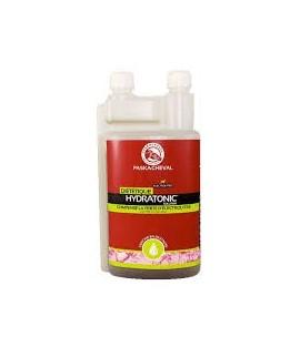 Hydratonic solution (électrolytes) PASKACHEVAL