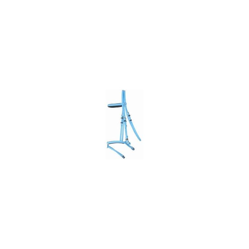 Bridon + Rênes bleu ciel Biotack TDET