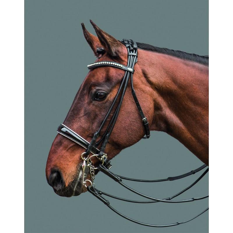 Bride Maestro MOUNTAIN HORSE