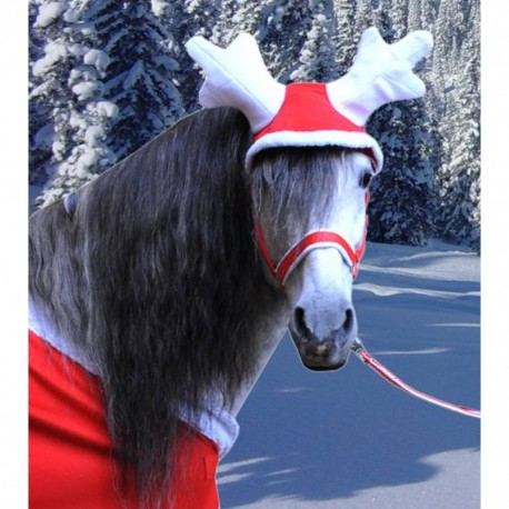 Bonnet Ramure Christmas Noel