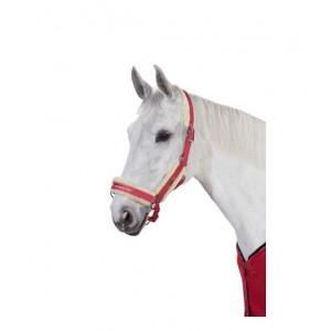 LICOLS ET LONGES équitation
