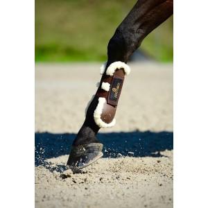 Protections de travail cheval : protège tendons et protège boulets.