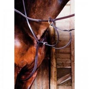 Martingales et Colliers de chasse équitation
