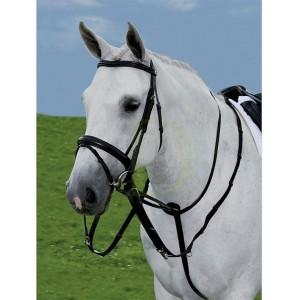 Rênes et coulissant équitation