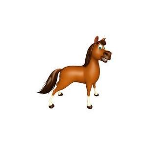 Promotions, déstockage, soldes cheval: matériel d'équitation