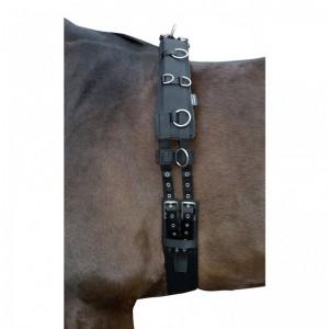 Matériel d'équitation pour travail à pied poney