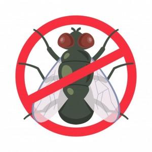 Protections anti-mouches au Meilleur Prix