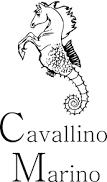 CAVALLINO MARINO - tapis et accessoires equitation